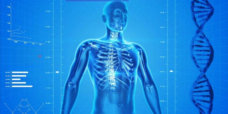 Esqueleto Digital, Policlínica Gipuzkoa, Donostia, San Sebastián