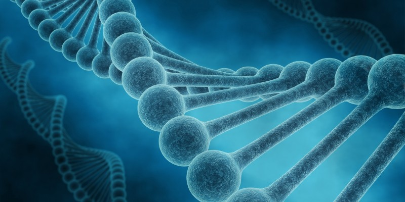 Genética y diagnóstico prenatal